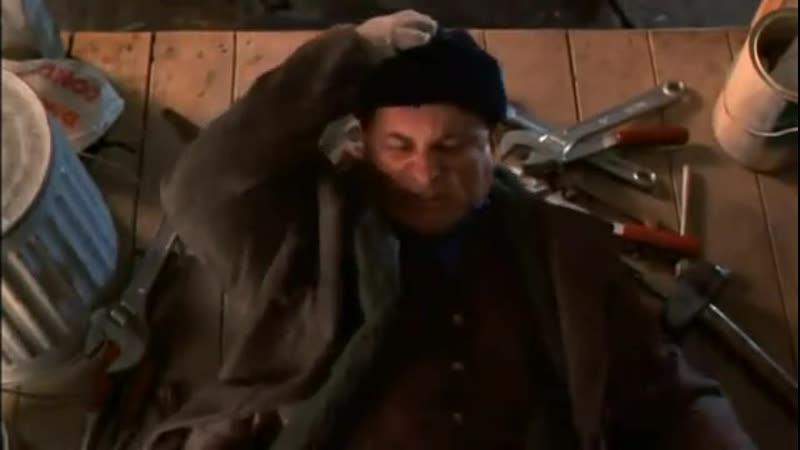 Один дома 2 Затерянный в Нью Йорке 1992 Ловушки для липких бандитов