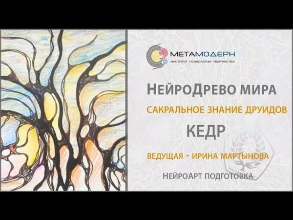 Волнующий факт об ИСЦЕЛЕНИИ ДУШИ и ТЕЛА Нейродруиды НейроДерево Кедр Ирина Мартынова