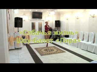 Щоу балет ЛИРА - Комический номер -Собачья жизнь