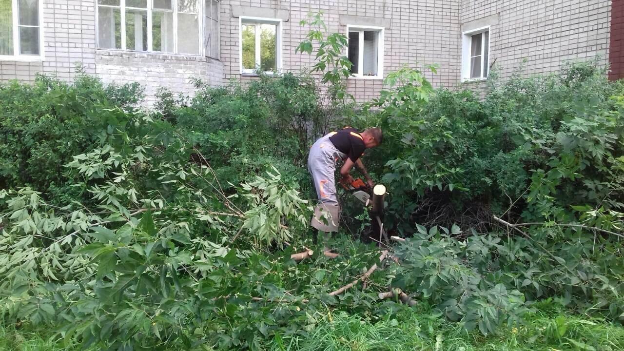 Ул. Р. Ердякова, 6. Распиловка упавшего дерева.