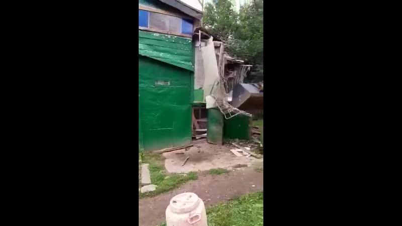 В Москве коммунальщики снесли голубятню внутри которой находились живые птенцы Взрослых голубей выпустили в последний момент