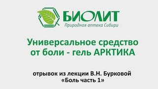 Универсальное средство от боли  - гель «АРКТИКА»  отрывок из лекции В Н  Бурковой «Боль часть 1»