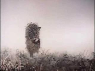 Ёжик в тумане Мультфильм