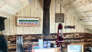 Spring is in the air at the off grid cabin!