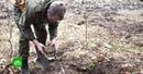 Охота за сокровищами как работают кладоискатели в России