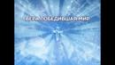 Вера победившая мир - воскресное служение 03.05.2020