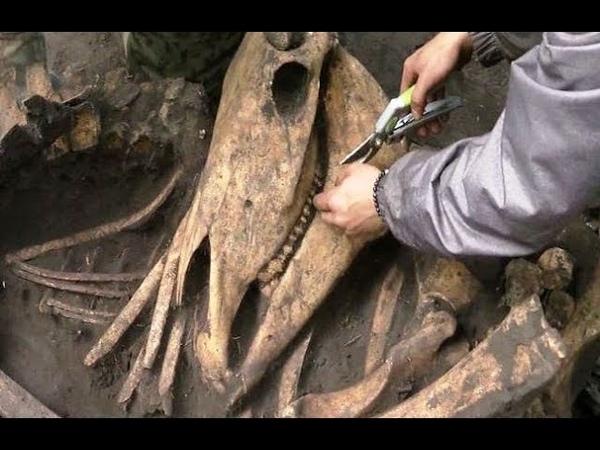 Открытие, опровергающее историю: археологи под Тюменью раскопали древнейшие захоронения гуннов