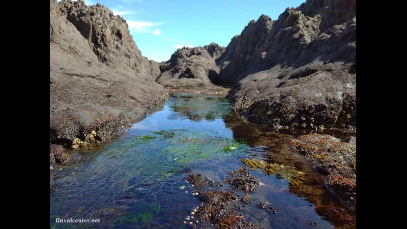 Рифы мыса Бурунный