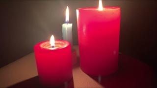 Молодёжный совет Мосприроды запустил флешмоб к «Часу Земли»