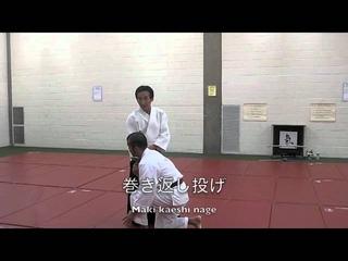 Kashiwaya sensei's Ki-Aikido seminar in Chicago