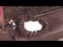 Los Vídeos más Raros del Mundo 42 / Videos Inexplicables y Asombrosos