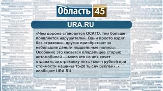 В Кургане травят собак, в Зауралье назначен новый вице-губернатор, в России подорожала страховка