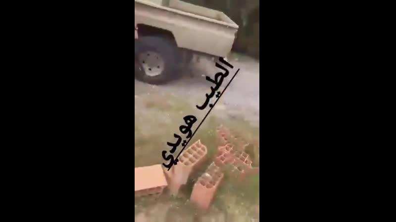 ЛНА арестовывают нигеров из ПНС