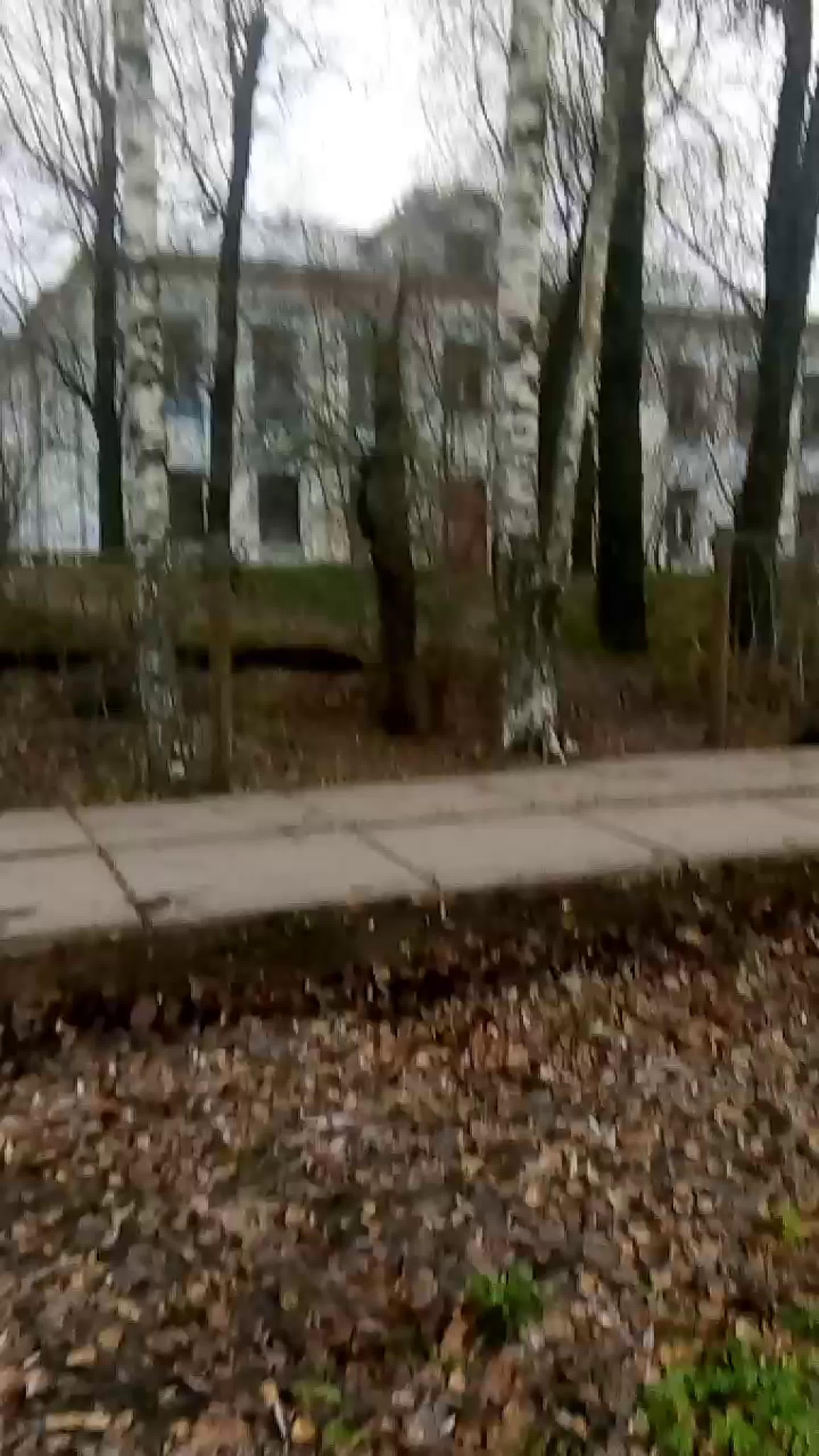 Live: Фонд помощи при Храме св.
