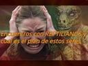 Encuentros con REPTILIANOS y cual es el PLAN de estos seres Reptilianos Genetica Hibridacion