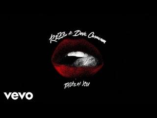Rezz - Taste of You (Visualizer) ft. Dove Cameron
