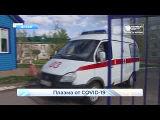 5 человек - доноры плазмы от коронавируса. Новости Кирова.