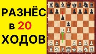 Славянская защита за белых. Как быстро выиграть в шахматы? Школа шахмат d4-d5.