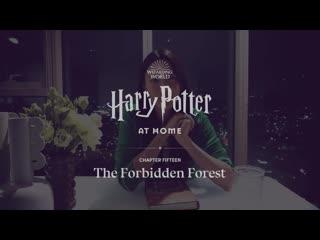 Claudia Kim and Dakota Fanning read Harry Potter at home