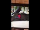 Oldj videos