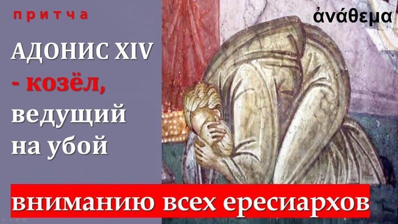 Предупреждение ересиархам или Адонис XIV притча об адонисах козлах провокаторах ведущих на убой