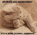 Фотоальбом Марии Волк