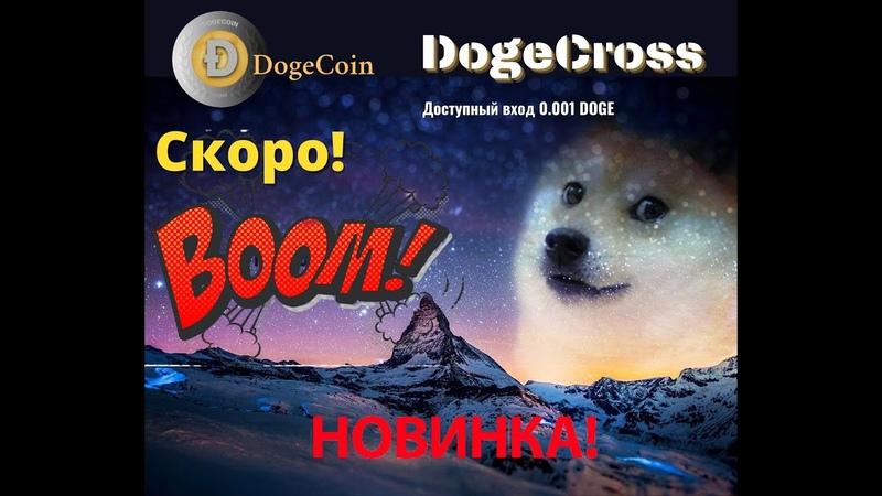 Dogecross новейшая система для заработка Dogecoin