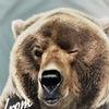 'Русский медведь' в символической политике