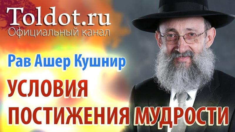 Рав Ашер Кушнир Условия постижения мудрости Месилат Йешарим 4
