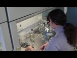 Видеоэкскурсия по институту физико-математических и естественных наук