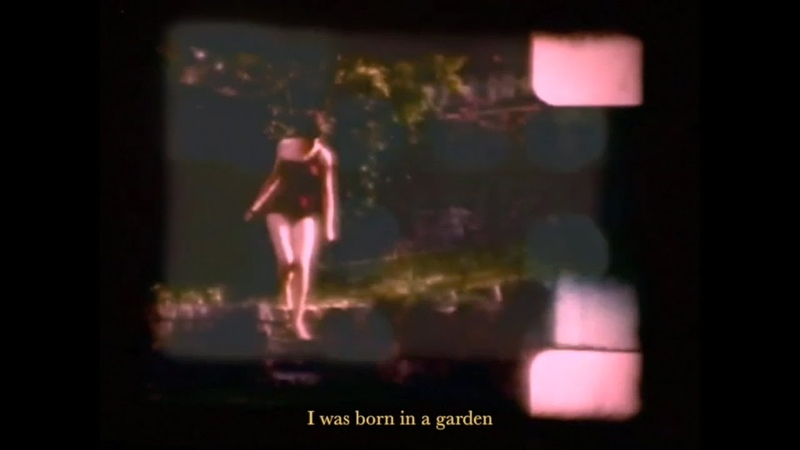 Herbal tea Garden Music Video