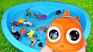 Learn Colors with Animals Wild Zoo Surprise Toys for Kids Baby Mom Education Video