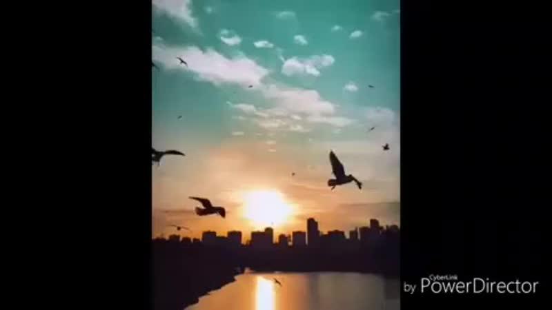 Qilman on Instagram ayri dunyalar Sizində şeir MP4 mp4