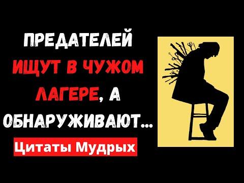 Мудрые цитаты великих людей о предательстве которые надо знать всем Мудрые мысли и афоризмы