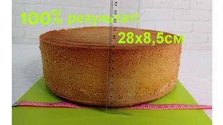 СЕКРЕТ пышного БОЛЬШОГО 28х8см бисквита без разрыхлителя! ПОДРОБНО все нюансы! от ТОРТЫ и КУЛИНАРИЯ!