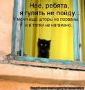 Персональный фотоальбом Ирины Точилиной