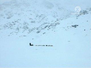Буран Гонка к полюсу Blizzard Race To The Pole 1 серия