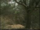 1996 - сериал Возвращение Сандокана Il Ritorno di Sandokan 2-я серия.