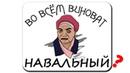 Во всём виноват Навальный Самолёт не сел в Омске с крупной партией кубиков Рубика!