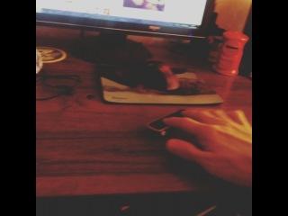 alex_seventeen video