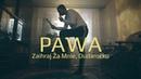 PAWA - Dudaročku