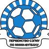 Первенство СЗГМУ по мини-футболу