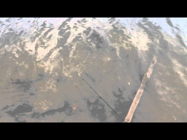 Zemex Rampage 150g VS Уклейка