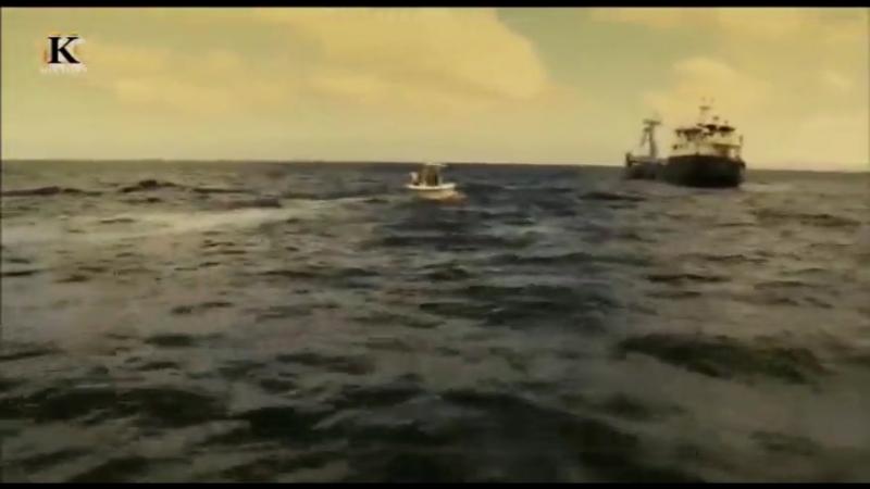 Акульи пастухи. Поймать убийцу (1-я серия) 2012