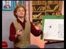 Физика 58. Кварки. Лептоны. Бозоны. Таблица мельчайших частиц — Академия занимательных наук