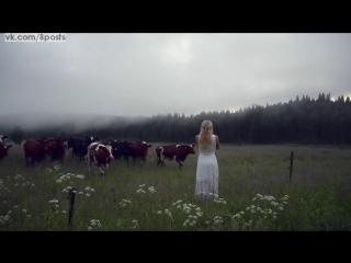 Девушка на пастбище зовёт коров особым волшебным криком, швеция / kulning - ancient swedish herdingcall