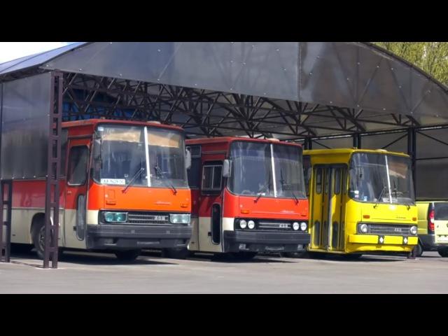 Икарус 256 по цене металлолома забрали комплектный автобус Ikarus 256 из под пресса