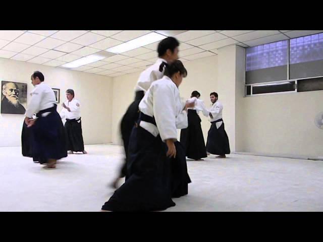 Waka Sensei (Mitsuteru Ueshiba) Soto Tenkan