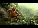 T killah, Дневник хача Мы отвесаем как обезьяны в Джунглях Новый трек