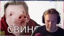 ДАНЯ КАШИН СМОТРИТ DK - ТУПОЙ СВИНОРЫЛ